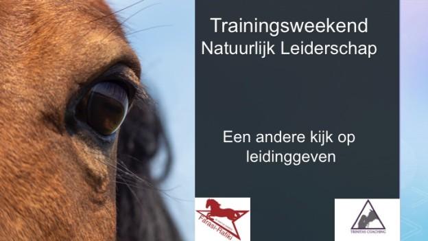 Header NL